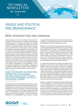 Single and political risk (Re)insurance