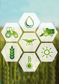 Visual for NEW TECHNOLOGY APPLIED TO ENHANCE PRODUCT OFFERING AND INSURANCE SERVICES TO AGRICULTURE: CONCRETE EXAMPLES