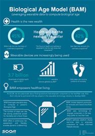 Visual for BAM - Infographics