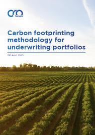 Visual for Carbon footprinting methodology for underwriting portfolios