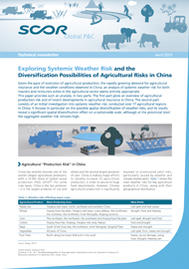 Visual for Technical newsletter - Exploring Systemic Weather Risk and the Diversification Possibilities of Agricultural Risks in China