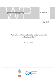 Visual for SCOR Chair - Valuation of natural capital under uncertain substitutability
